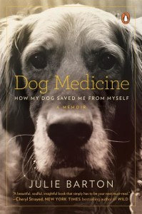 Dog Medicine book cover